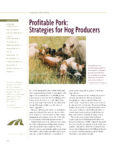 reading on profitable pork